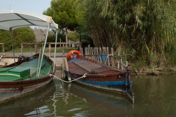 Barcas Albufera