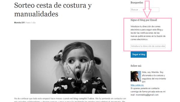 seguir-blog-momita