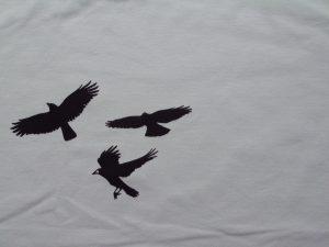 tela cuervos